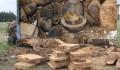 End Grain Sealer/ Log Shield18 litre  18kg  Bulk